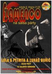 20140308-flamenco-800