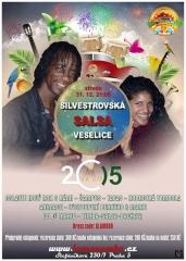 20141231-silvestrovska-veselice-800