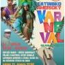20150213-latinoamericky-karneval-800
